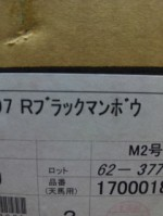 DVD-R(業務用スピンドルロゴなし)と国産DVDトールケースが到着