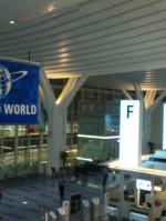 羽田空港国際線ターミナルがからハワイへ→